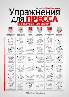 Лучшие упражнения для пресса, для выполнения которых не нужны тренажеры и спортзал.