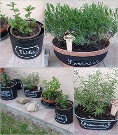 Vše o co se zajímám: Květena a popis Budgeting Money, Planter Pots, Gardening, Lawn And Garden, Horticulture