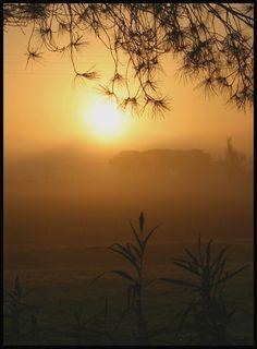 Toscana Vacation Destinations, Dream Vacations, Trieste, Genoa, Toscana, Sardinia, Sicily, Colours, Landscape