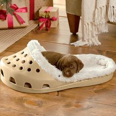 Croc hondenmand, dog bed