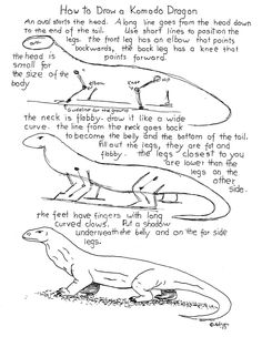 How To Draw A Komodo Dragon Worksheet. See  the blog for projects notes, http://drawinglessonsfortheyoungartist.blogspot.com/2013/03/how-to-draw-komodo-dragon-worksheet.html