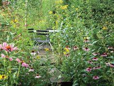 rosa pfingstrosen im garten im landhausstil | garden | pinterest, Gartenarbeit ideen