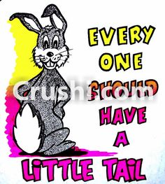 EVERYONE SHOULD HAVE A LITTLE TAIL VINTAGE T-SHIRT IRON-ON BUNNY RAT'S HOLE LEWD