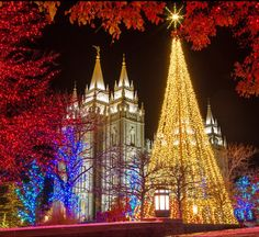 A traditional and brilliant holiday outing at Temple Square in downtown Salt Lake City is not to be missed. Temple Square, National Treasure, Salt Lake City, Geology, Places To See, Utah, National Parks, Traditional, Holiday