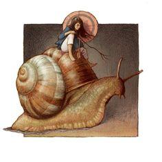 jessica shirley illustration: Sunday driver: a snails pace Snail Art, Animal Sketches, Fairy Art, Pretty Art, Surreal Art, Inktober, Art Inspo, Amazing Art, Fantasy Art