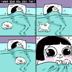 Lustige Tier Memes des Tages - 32 Pics - Lovely Animals World, Memes Humor, Dog Memes, Funny Memes, Funny Tweets, Funniest Memes, Funny Gifs, Funny Animal Memes, Funny Animal Pictures, Funny Animals