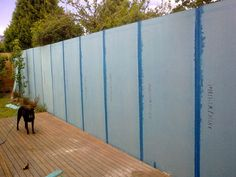 Rendered blue board cement sheet fence is designed to be a cost effective way to replicate the look of rendered masonry, with savings of up to over the cost of traditional brickwork with concrete foundations. Fence Around Pool, Backyard Renovations, Fence Screening, Boundary Walls, Old Fences, Garden Fencing, Farm Yard, Blue Walls, Landscape Architecture
