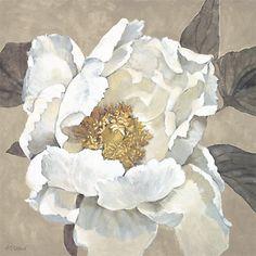 Adele Fletcher - Paperwhite poppy Print on Canvas, 48 x - love big flowers Acrylic Flowers, Watercolor Flowers, Watercolor Paintings, Peony Painting, Floral Drawing, Art Courses, Botanical Drawings, Large Art, Flower Art