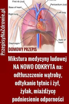 Polish Recipes, Herbal Medicine, Natural Oils, Herbalism, Health Fitness, Healthy Recipes, Beauty, Therapy, Healthy Eating Recipes