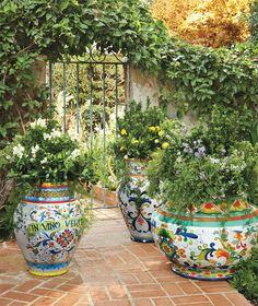 The Contained Gardener Italian Inspired Painted Planters Cactus E Suculentas, Italian Pottery, Italian Garden, Mediterranean Garden, Outdoor Living, Outdoor Decor, Garden Planters, Container Gardening, Fine Gardening