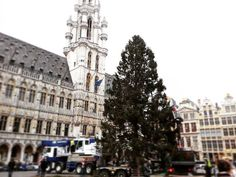 The Brussels' Christmas Tree is back in town! https://www.instagram.com/visitbrussels/
