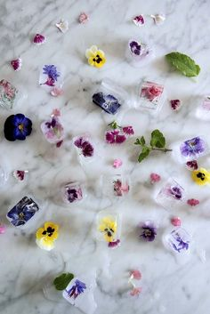 Frozen Flower Ice Cubes tutorial! Love these!!