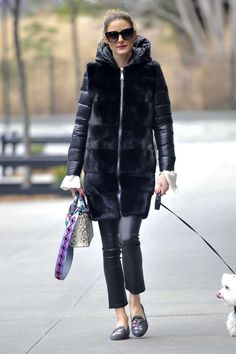 Jan. 19, 2017 - Olivia Palermo with her dog Mr Butler