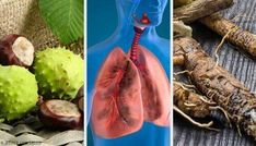 Try these 4 Homemade Remedies to Strengthen your Lungs Try These 4 Homemade Remedies to Breathe Better and Strengthen Your Lungs Deodorant Recipes, Homemade Deodorant, Herbal Remedies, Natural Remedies, Vegan Ravioli, Cinnamon Apple Chips, Homemade Flour Tortillas, Best Homemade Pizza, Lavender Recipes