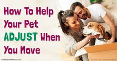 Here are five 'musts' for a safer, gentler transition to a new home - versus the traumatic choice 29 and 19 percent of cat and dog owners admitted to making.