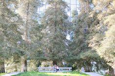 noguchi museum | california scenario engagement | costa mesa | miminguyen.com
