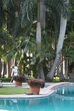 Alberca Hacienda San Gabriel de las Palmas en Morelos... más sobre este lugar en www.cynthialeppaniemi.com