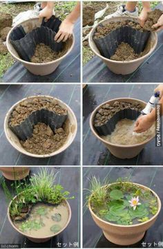 Great idea to decorate your garden