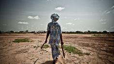 Oxfam Intermón presenta un informe en el Foro de Davos que incide en la desigualdad extrema dela economía mundial e insta a acabar con los privilegios y la concentración de poderLa acumulación y concentración de la riqueza, la abismal brecha de género, la proliferación de los paraísos fiscales y las grandes diferencias salariales constituyenalgunos de los mayores retos para erradicar la desigualdad
