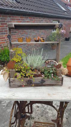 Outdoor Structures, Garden, Plants, Decoration, Enlarge Photos, Small Wooden Boxes, Garden Art, Decorating Ideas, Decor