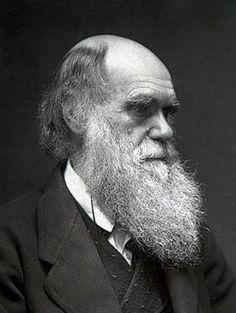 This picture shows Charles Darwin a science that is known for the Theory of Evolution. Charles Darwin idea was about survival of the fittest and natural selection. Colorized Historical Photos, Colorized History, Einstein, Charles Darwin Biography, Inspirer Les Gens, Robert Darwin, Origin Of Species, Theory Of Evolution, History Photos