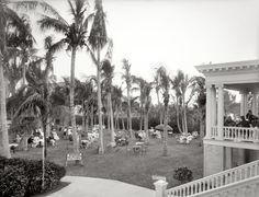"The Royal Poinciana, Palm Beach."" We return to the RP for a bit of culture. Vintage Photographs, Vintage Photos, Shorpy Historical Photos, Palm Beach Fl, High Resolution Photos, Photo Archive, Hd Images, Dolores Park, Fine Art"