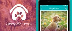 « Adopte-moi », le Tinder pour adopter ses animaux !
