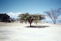 www.sevilaymaria.com