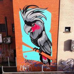 Into the parrot wild by @danleo from #ireland (globalstreetart.com/dangle) #globalstreetart #wallart