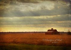 Old Barn on Old River Road between New Orleans and Baton Rouge La