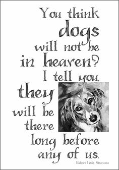 Diamond, Daisy, Max....and every sweetheart who has passed away under every fathomable circumstance <3 :*(