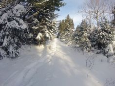 Snow Shoeing Lilly's Lane  Posted by: Mike Johnson //  Amherst, Nova Scotia // Shot: February 10, 2013