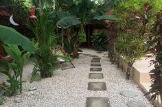 walkways samarapalmlodge   - Costa Rica