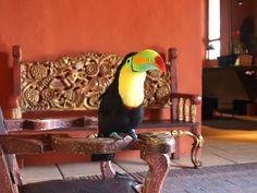 Cartagena, Colombia  - Sofitel Santa Clara hotel