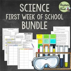 Genetics crossword puzzle 12 clues with word bank and answer key editable science teacher back to school bundle for first week of school malvernweather Images