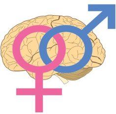 Microamaze: Male DNA Found in Brains of Women