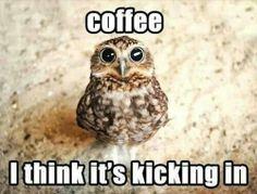 hehehe.. coffee