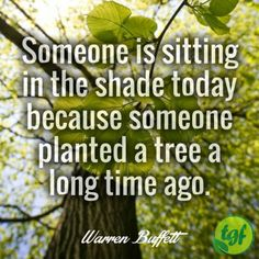 Someone is sitting in the shade today because someone planted. Wise Quotes, Great Quotes, Words Quotes, Wise Words, Inspirational Quotes, Nature Quotes, Spiritual Quotes, Positive Quotes, Farm Sayings