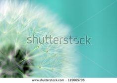 Absztrakt stock fényképészet | Shutterstock