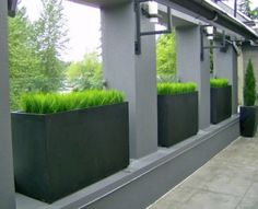 Large planters set between pillars for a contemporary boundary solution.