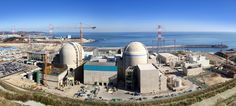 South Korea's Nuclear Power Dependence Ranks 4th in the World | Koogle TV