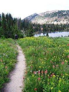 high uintas hikes and lakes