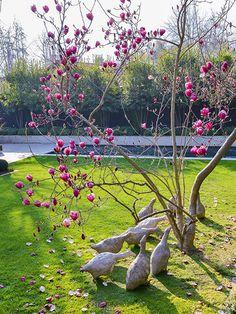 30 stunning spring garden ideas for front yard and backyard landscaping 12 Jardines Del Patio Frontal, Chile, Spring Garden, Backyard Landscaping, Country Living, Garden Sculpture, Garden Design, Landscape, Outdoor Decor