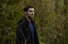 """""""Grimm"""" keeps its strong Season 6 streak going, with """"Tree People,"""" a clever episode about   """"eco-revenge"""" by supernatural creatures in the Oregon forest."""