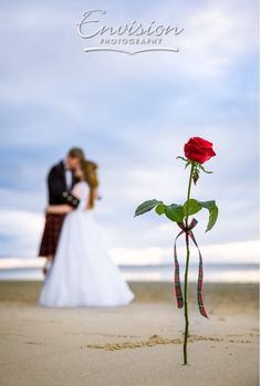 Louise and Craig... a kiss from a rose | Photo: Envision Photography | #kingfisherbay #fraserisland #destinationwedding #fraserislandwedding #fraserwedding http://www.fraserislandweddings.com.au/ #AccorAustralia #Mercure