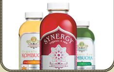 Synergy - Organic & Raw made from Kombucha Supports - Digestion, Metabolism, Immune System, Appetite Control, Weight Control, Liver Function, Body Alkalinity and more