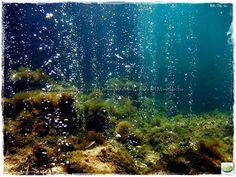 vents ischia Luca Tiberti