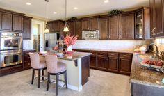 Denise   Kitchen   Denise Floor Plan   Richmond American Homes   ,  