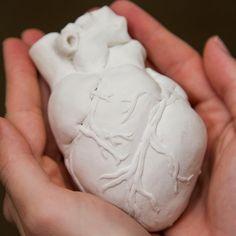 Anatomically Correct Ceramic Heart.