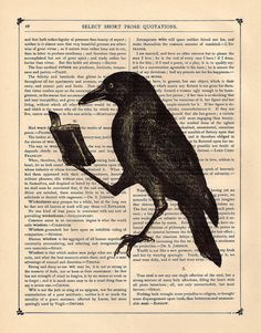 Bookworm Crow Steampunk Raven illustration beautifully upcycled dictionary page book art print. $10.00, via Etsy.